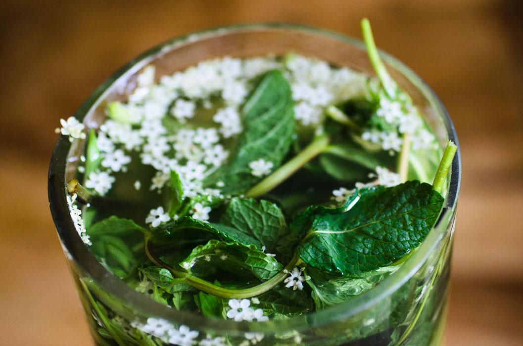 Light elderflower cordial // vegan