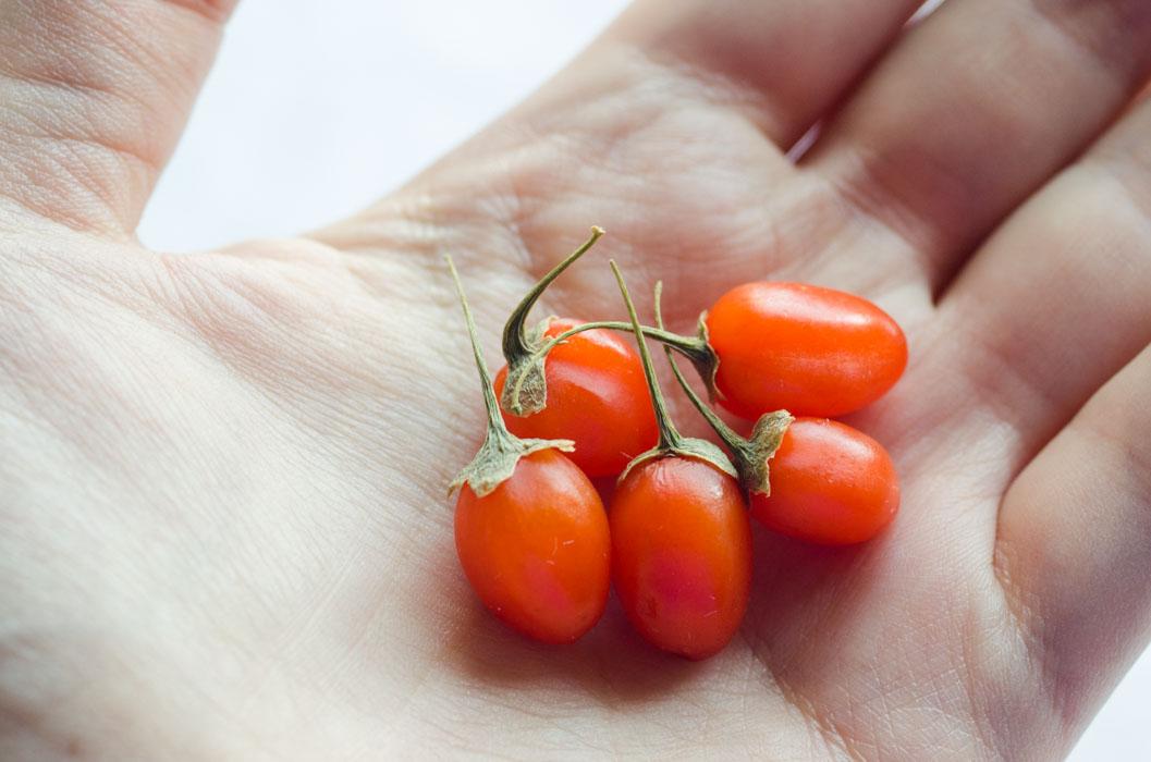 Fresh Goji Berry Smoothie Bowl Vegan