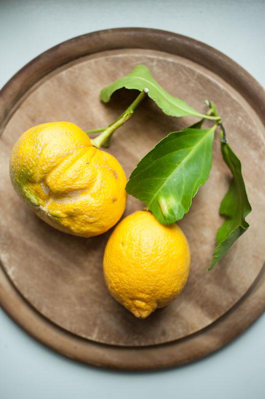 Marta's Plants - Lemon and coconut cake with cashew frosting {vegan}
